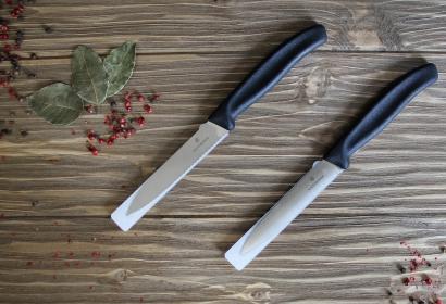 Нож для овощей VICTORINOX 10 см